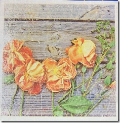 roses_against_wood_iron_transfer