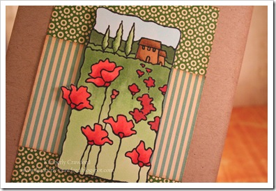 Poppies Scene CU