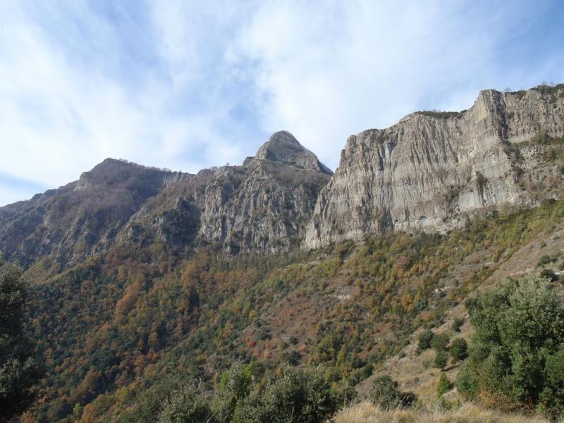 Cara sud del Puigsacalm