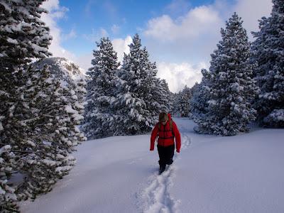 Avançant sobre la neu fonda