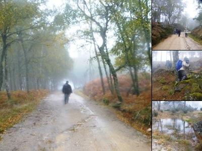 Ver Chuva e nevoeiro