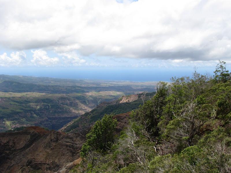 The horizon at Waimea