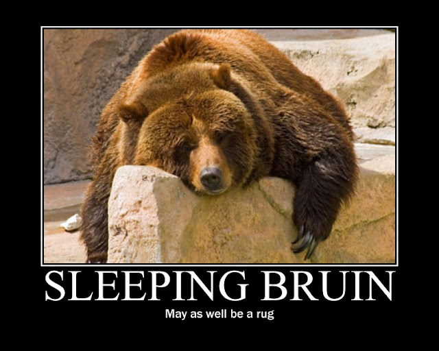 sleepingbear