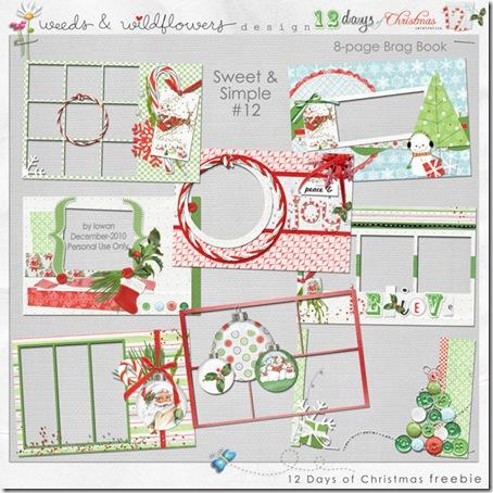 Iowan_Christmas2010_BB_PV