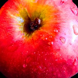 apple close up by LADOCKi Elvira - Food & Drink Fruits & Vegetables ( apple )
