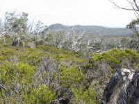 IMG_3075 View to Davis Lookout.JPG Photo