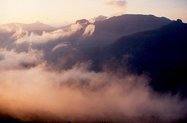 [9140 Pelion Mist[2].jpg]