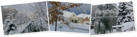 View Snow Oct 22 2010