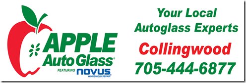 apple auto glass reduced size.png
