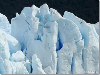 101114 NP Los Glaciares (10)