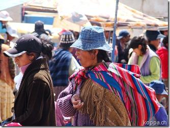 110221 Ruta nach La Paz (7)