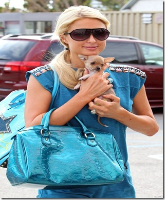 paris-hilton-110710-8