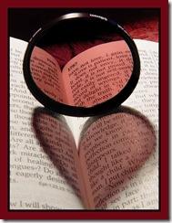 LoveBookHeart