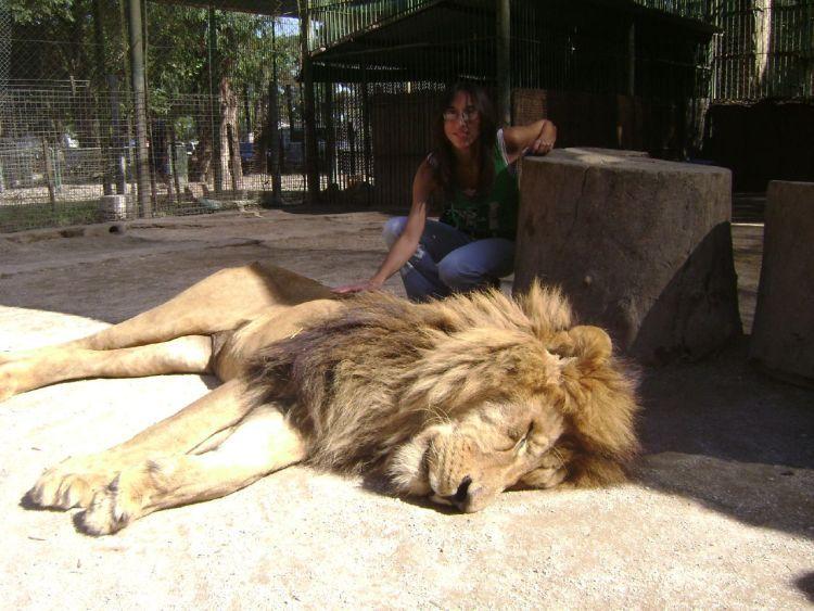 zoo 12 Lujan Zoo, Argentina