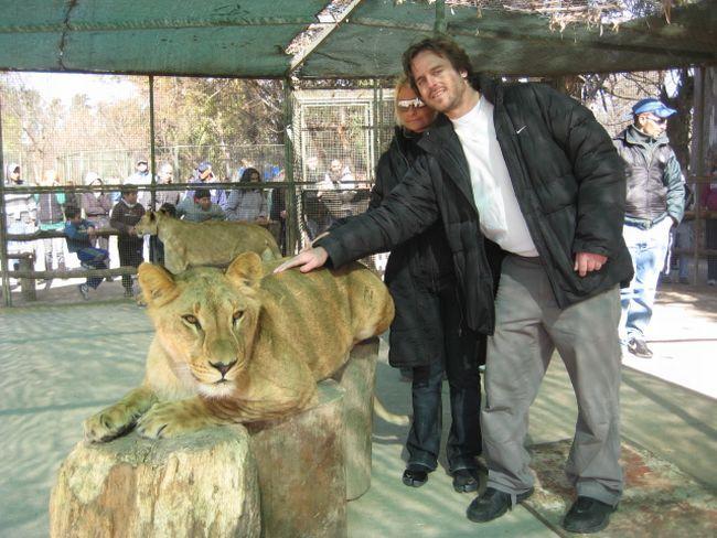 zoo 14 Lujan Zoo, Argentina