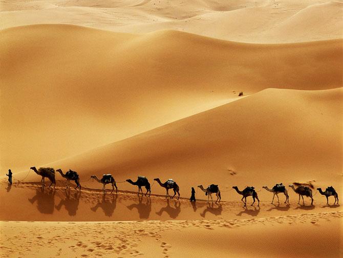 القوافل الصحراء