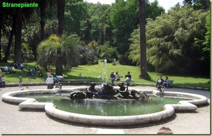 fontana dei tritoni roma