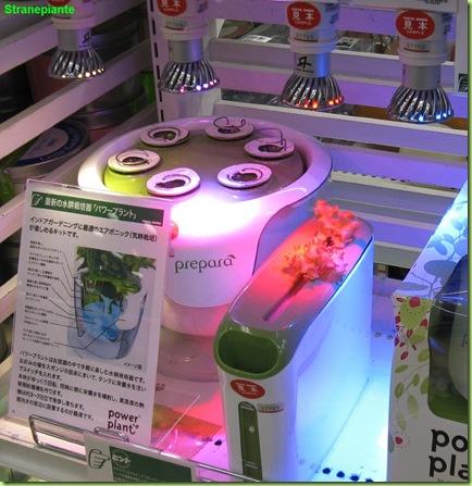led idroponica tokyo