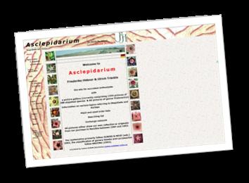 Siti preferiti asclepidarium galleria foto e articoli for Negozi acquariofilia online