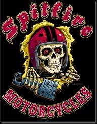 SpitfireSkull