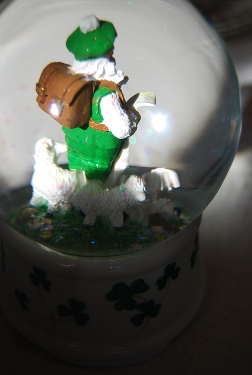 Little Irish Man_14 2011