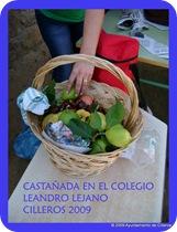 -1- CASTAÑADA1