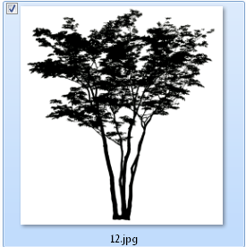 รบกวนถามขั้นตอนการทำต้นไม้โปร่งแสงใน V-ray  1.48.89 ครับ Tt002