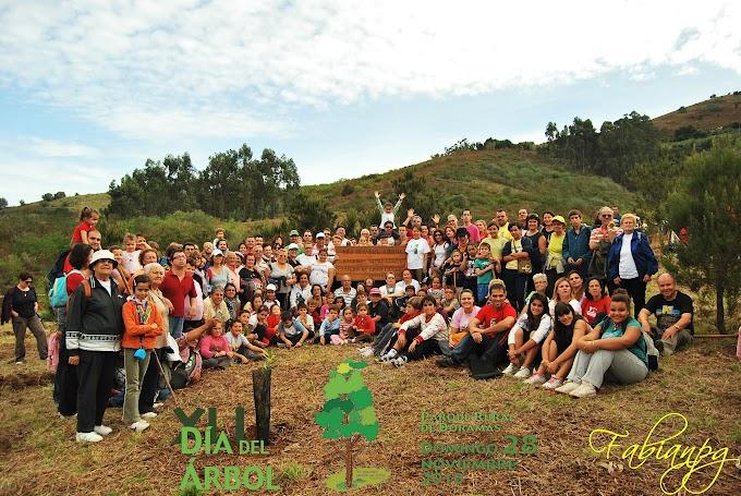 XLI Día del Árbol en Gran Canaria