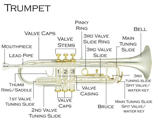 Trumpet-Description.jpg