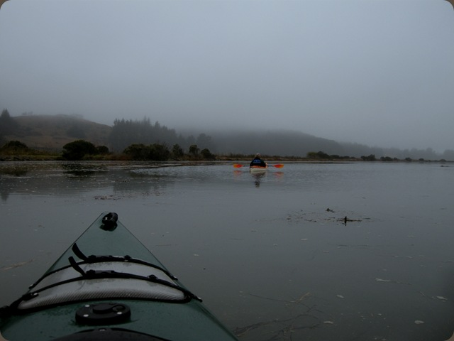 Eureka fog (8)