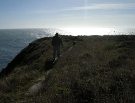 Sonoma Coast (41)
