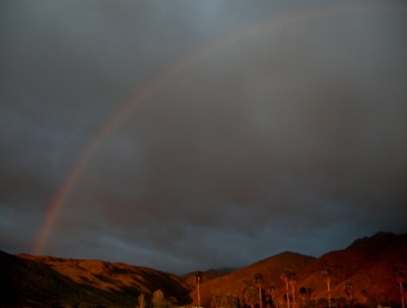 Borrego rainbow (5)