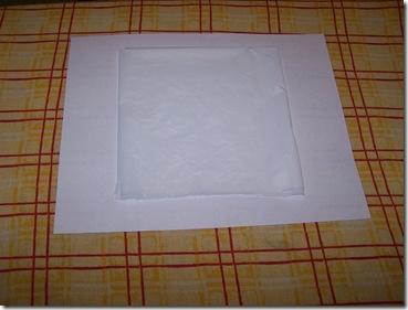 plastic store bag album 010