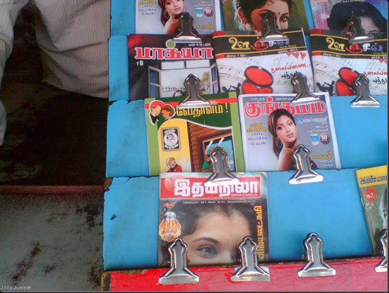 Nehru News Mart, Mylapore, Luz Corner Lion Display