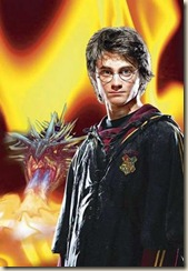 rowling_potter_narrowweb__300x437,0