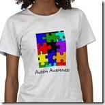 autism_puzzle_autism_awareness_tshirt-p235075751341150110tdae_380