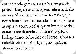 """Trecho da matéria: """"biólogo Marcelo Abrahão de Moraes"""". Sou eu!!"""