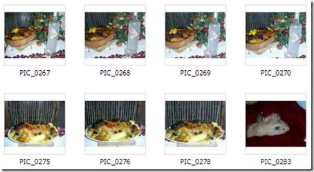 2008-12-01_132116 утка