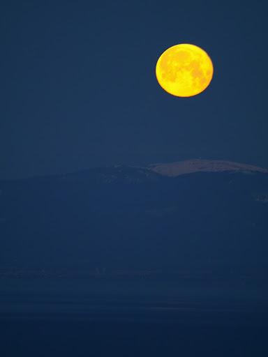 Coucher de lune, hier matin AG013425