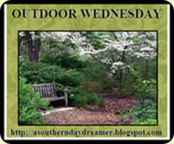 OutdoorWednesdaylogo6[1][1]