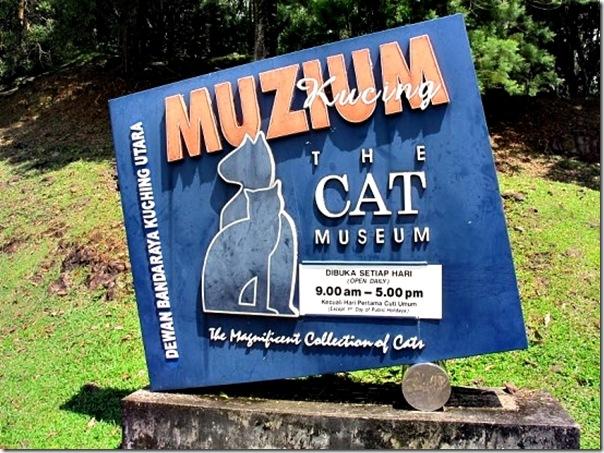 cat-museum-1