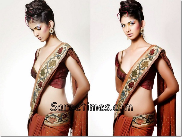 Reha_Brown_Designer_Saree