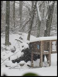snowfeb 005