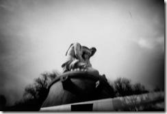 pinhole-imagerie-jan11-paulo-13