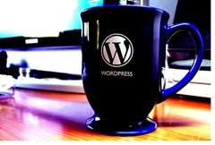 mug_wordpress