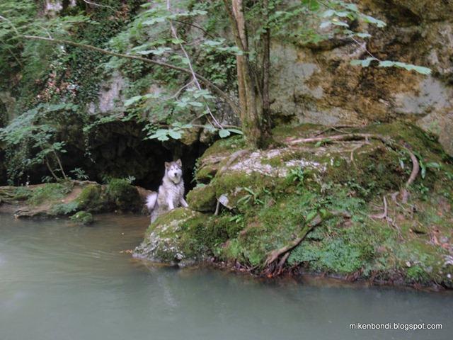 Munson explores the Gorge