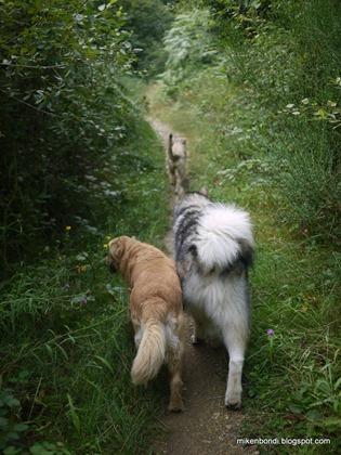 Tosca & Munson follow Smeggs