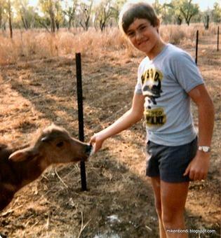Darwin trip - 9 - Michael   baby water buffalo
