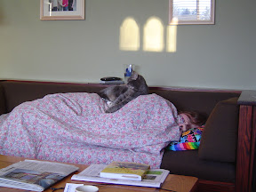 image of sleeping cat owner