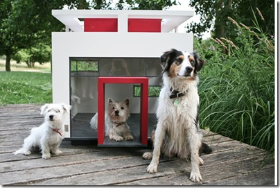 dog_mansion_cubix